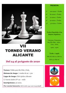 VII Torneo de verano
